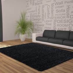 Tapis Shaggy Deluxe Tapis DREAM SHAGGY 4000 ANTHRACITES 120 X 120 cm Ronde