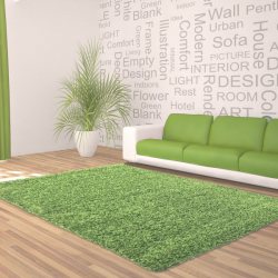 Tapis Shaggy Deluxe Tapis DREAM SHAGGY 4000 VERT 60 x 550 cm Coureur