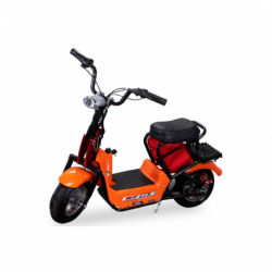 Mini E-Bike Minibike Scooter Elektroroller SQ350DH 350W